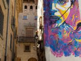 Tudela, Spain – June 30, 2015: Street Art in the city of Tudela, Spain. Mural by C215, the moniker of Christian Gu?my, a French street artist.
